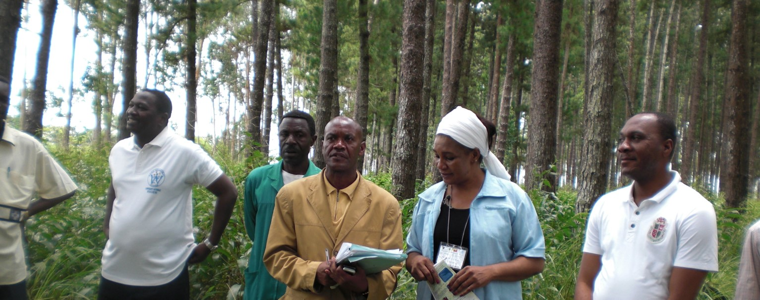 Dr. Ing. Rosalie Matondo, Minister of Forestry, Sustainable Development and the Environment, in a past event in a forest plantation in Congo Brazzaville. Photo © AFF/Godwin Kowero